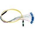 Ribbon Fiber Optic Patch Cords