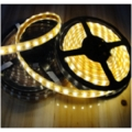LED Strip Light 5050 Stick IP67 Waterproof 120 LEDs / Meter (28.8 W)