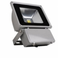 LED Flood Light 100 W NEWG-FD100A